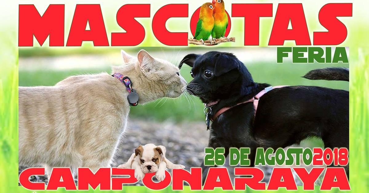 IV Feria de Mascotas. Camponaraya 1